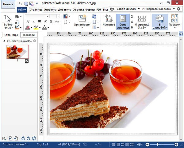 priPrinter Professional 6.1.2.2316 Final RePack by D!akov