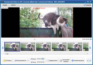 ThunderSoft Video to GIF Converter 1.4.5.0 Portable Rus