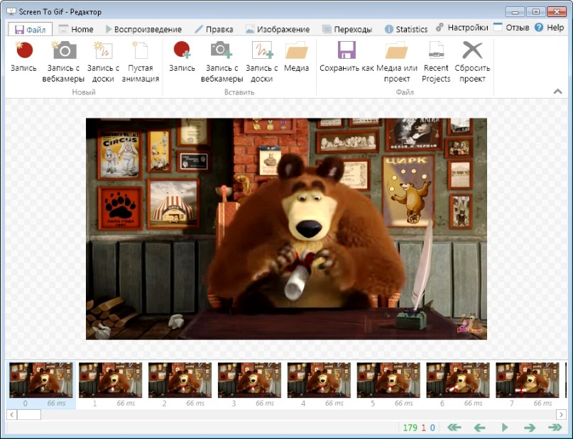 ScreenToGif 2.8 Portable  Rus