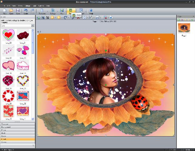 Portable Picture Collage Maker Pro v3.0.5.3432