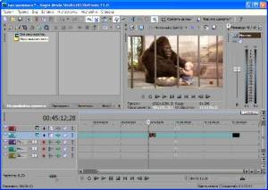Sony Vegas Movie Studio HD Platinum 11.0.256 Portable Rus
