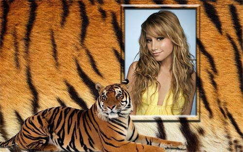 Рамка для фотошоп - Роскошный тигр