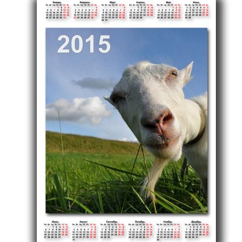 Настенный календарь - Коза в объективе