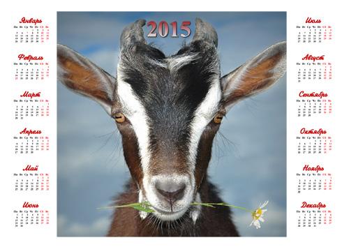 Календарь на 2015 год - Символ года с ромашкой