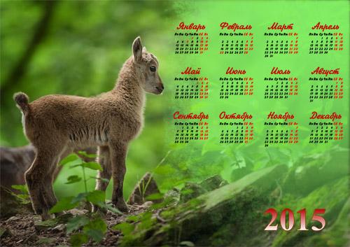 Календарь 2015 - Маленький милый козленок