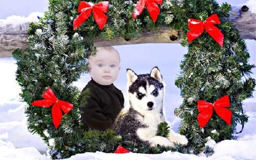 Шаблон для детей - Ребенок рядом с красивой хаски под новогодним венком