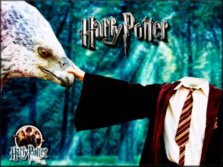 Фотошаблон для фотомонтажа - Гарри Потер
