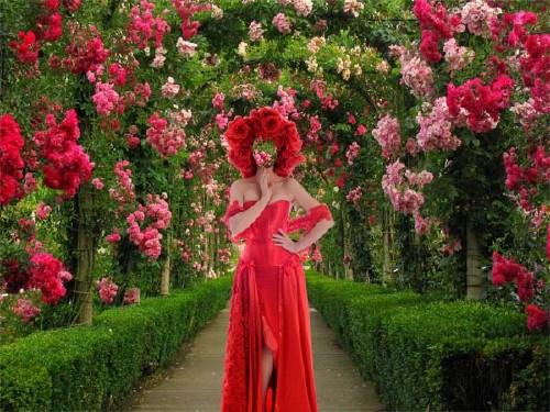 Шаблон psd женский - В красном наряде среди роз