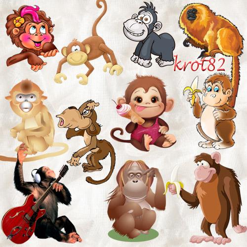 Клипарт символ 2016 года – Обезьяны, макаки, гориллы