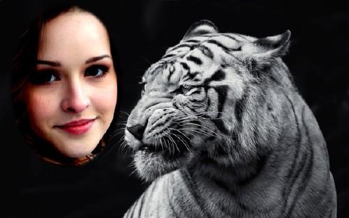 Рамка к фото - Грозный белый тигр